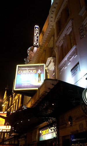 Apollo at Night - Curious Incident