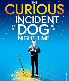 Curious Incident of the Dog in the Night Time Apollo Theatre